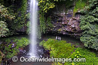 Crystal Showers Falls Dorrigo Photo - Gary Bell