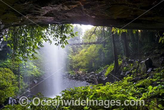 Crystal Shower Falls, situated in the Dorrigo National Park, part of the Gondwana Rainforests of Australia World Heritage Area. Dorrigo, NSW, Australia. Inscribed on the World Heritage List in recognition of its outstanding universal value. Photo - Gary Bell