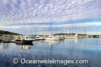 Coffs Harbour Marina photo
