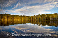 Urunga Wetland Reserve Photo - Gary Bell