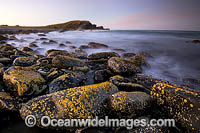 Pebbly Beach seascape photo