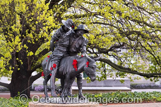 Simpson and his donkey Memorial. Canberra. John Simpson Kirkpatrick enlisted in 2rd Australian Field Ambulance as Private Simpson on 25 Aug 1914. In landing at Gallipoli on Apr 1915 and became famous among Aust troops for his bravery and compassion. Photo - Gary Bell