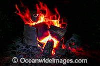 Campfire in outback Photo - Gary Bell