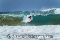 Surfer at Sawtell Photo - Gary Bell