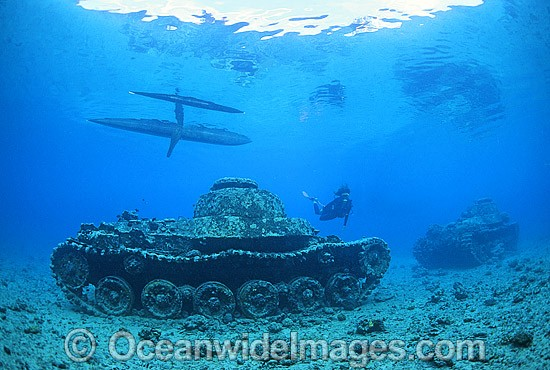 Scuba Diver exploring a wreck of World War II Japanese tanks. New Britain Island, Papua New Guinea. Photo - Gary Bell