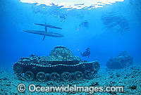 World War II Japanese tanks Photo - Gary Bell