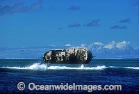 Japanese Long-line shipwreck Photo - Gary Bell