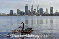 Swan River Perth Photo - Gary Bell