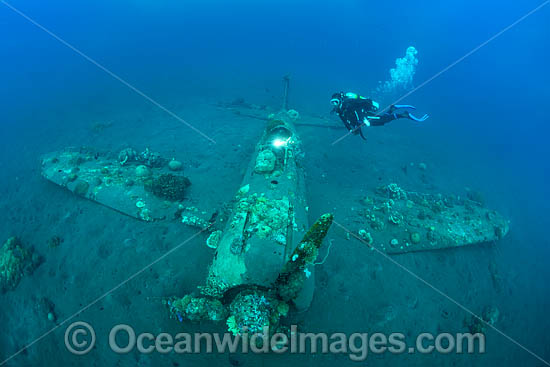 Divers exploring a WWll Japanese Zero fighter plane sitting intact and upright in 17m of water. Kimbe Bay, Papua New Guinea. Photo - Gary Bell