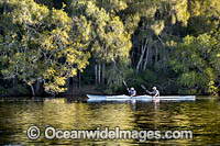 Kayaking Bonville Creek Photo - Gary Bell