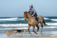 Horseriding Coffs Harbour Photo - Gary Bell