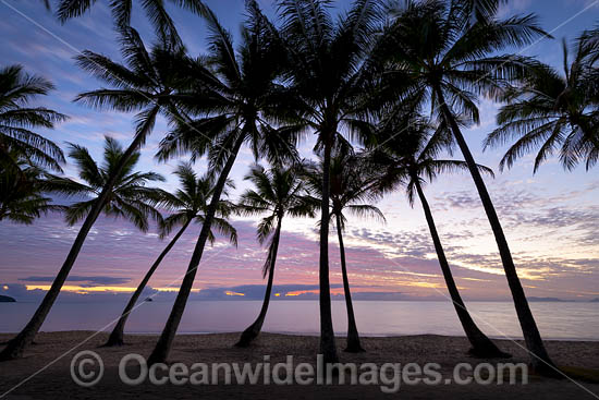 Sunrise at Palm Cove, situated near Cairns, Queensland, Austrealia. Photo - Gary Bell