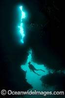 Diver in Cavern Photo - Gary Bell