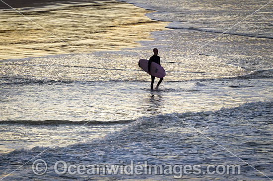 Surfer entering the sea, Crescent Head, New South Wales, Australia. Photo - Gary Bell