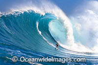 Hawaii surfer Photo - David Fleetham