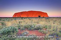 Uluru Ayers Rock Photo - Gary Bell