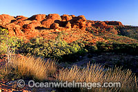 Sandstone domes Kings Canyon Photo - Gary Bell