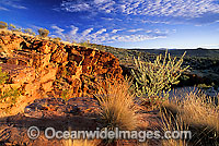 Trephina Gorge MacDonnell Ranges Photo - Gary Bell