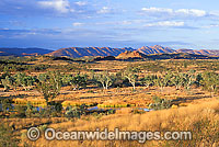 Eastern MacDonnell Ranges at sunset Photo - Gary Bell