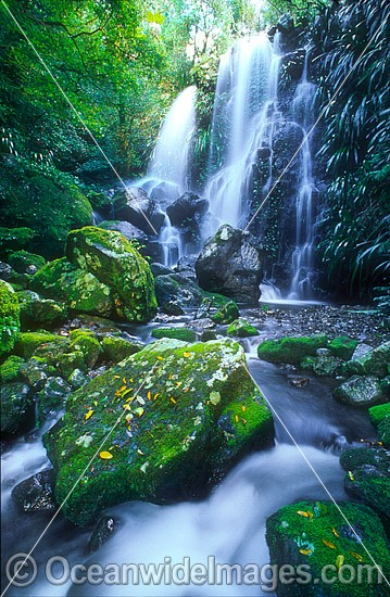 Chalan Falls. Lamington World Heritage National Park, Queensland, Australia Photo - Gary Bell