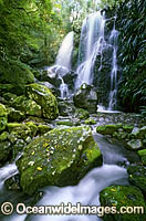 Chalan Falls Lamington National Park photo