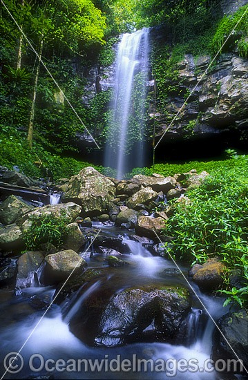 Crystal Shower Falls. Dorrigo World Heritage National Park, New South Wales, Australia Photo - Gary Bell