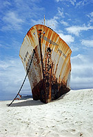 Shipwreck Cherry Venture Photo - Gary Bell