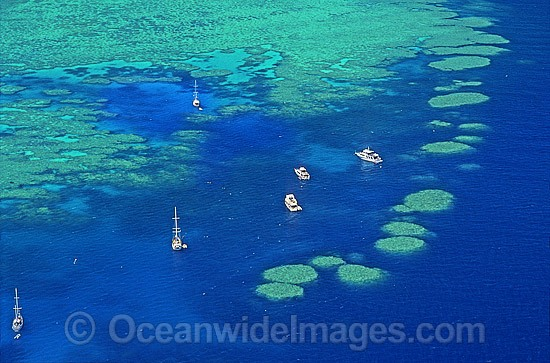 Aerial view of Bait Reef dive site near Hayman Island. Great Barrier Reef, Queensland, Australia