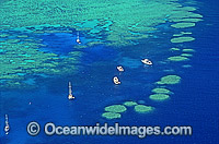 Aerial Hayman Island photo