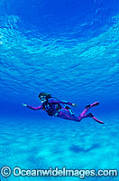 Scuba Diver in Great Barrier Reef Photo - Gary Bell
