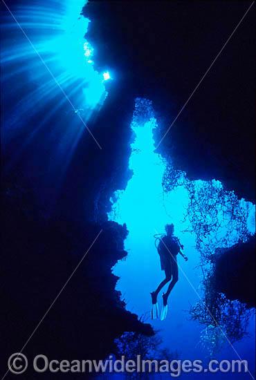 Tropical Scuba Diver Photos   Tropical Scuba Diver Images Pictures