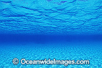 Underwater seascape sandy ocean surface photo