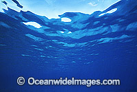Ocean surface Coral Sea photo