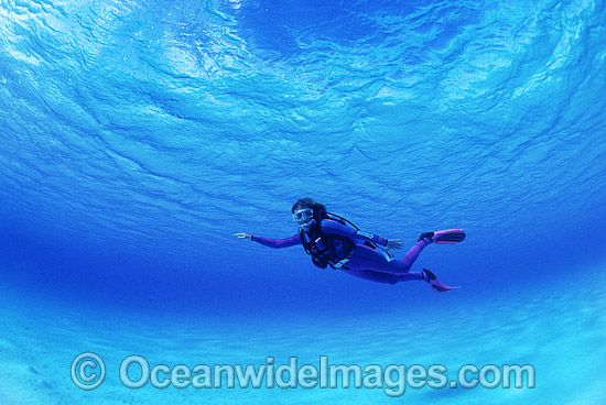 Scuba Diver in clear blue water. Great Barrier Reef, Queensland, Australia. Photo - Gary Bell