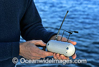 CSIRO satelite device for Great White Shark Photo - Gary Bell