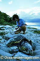 Researcher documents nesting Loggerhead Turtle Photo - Gary Bell