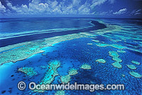 Aerial Hook Hardy Reef photo