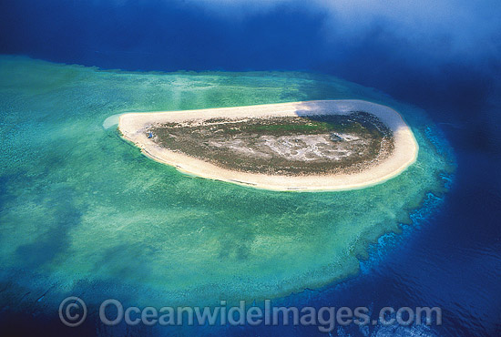 Aerial view of Raine Island and surrounding coral reef. Far Northern Great Barrier Reef, Queensland, Australia Photo - Gary Bell