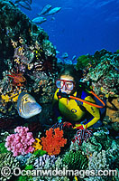 Scuba Diver with tropical fish Photo - Gary Bell