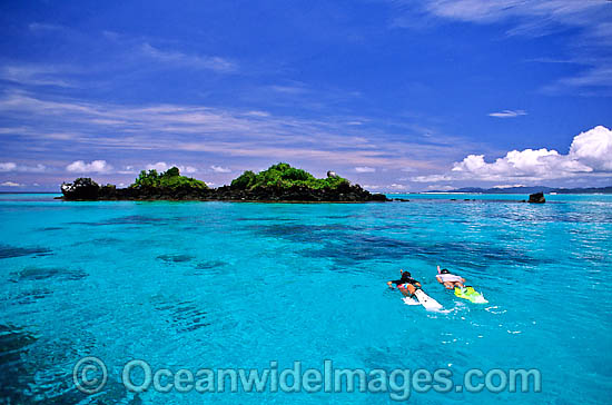 Male and female Snorkel Divers / Snorkelers exploring Coral reef. Fijian Islands, Fiji Photo - Gary Bell