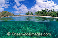 tropical island beach Coral reef Photo - Gary Bell