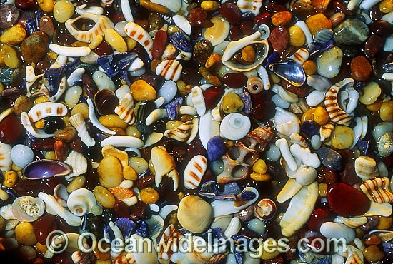 Seashore seashells and pebble rubble. Coastal New South Wales, Australia