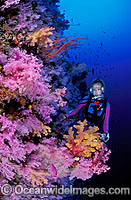 Scuba Diver at undersea dropoff photo