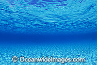 Underwater sandy sea floor photo