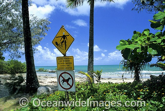 Dangerous Jellyfish warning sign erected on tropical beach. Port Douglas, North Queensland, Australia