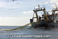 Stern fishing trawler Photo - Chris & Monique Fallows
