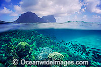 Lord Howe Island Photo - Gary Bell