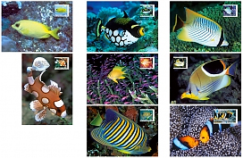 Fishes of the Reef