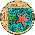 Biscuit Sea Star Coin