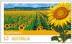 Sunflower Postage Stamp